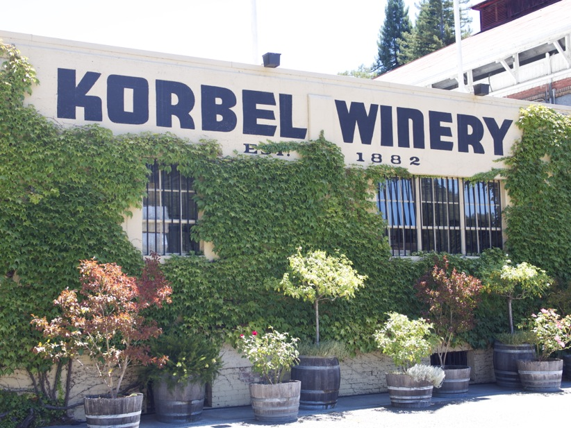 We Went on the Korbel Tour, Y'all