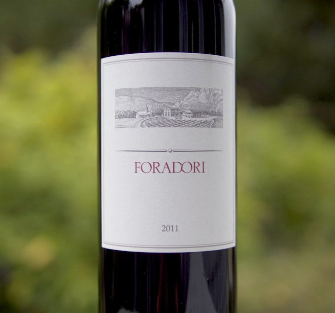 Wine of the Week: Foradori 2011 Teroldego, Trentino-Alto Adige